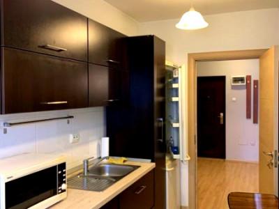 Apartament 1 camera imobil nou strada Buna Ziua